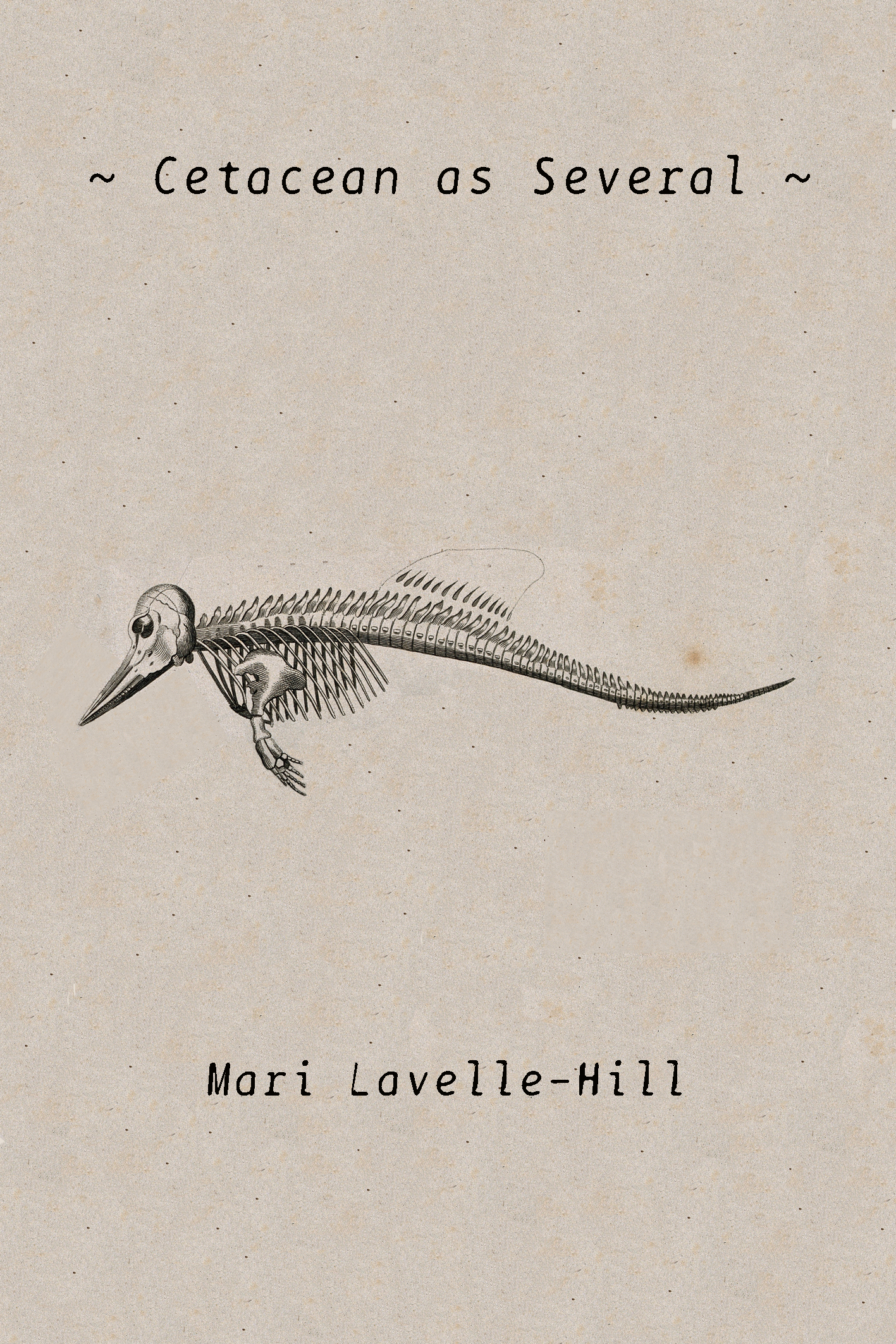 Cetacean as Several - Mari Lavelle-Hill